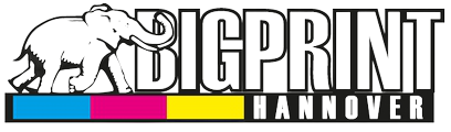 Logo-Bigprint-Retina__1_-removebg-preview